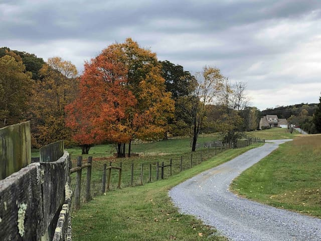 Tranquility, Adventure & Private Suite~near I-81