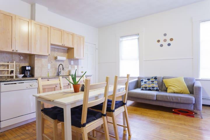 Kendall Square 2 bedroom apartment! - Cambridge - Apartment