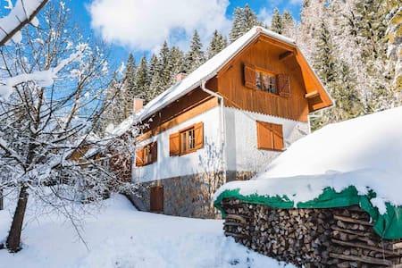 Rogla Dandi Pohorje house 2 – Hidden in the nature