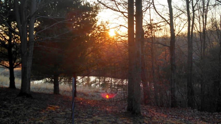 Wilkesville Cabin - Albany - Cabin
