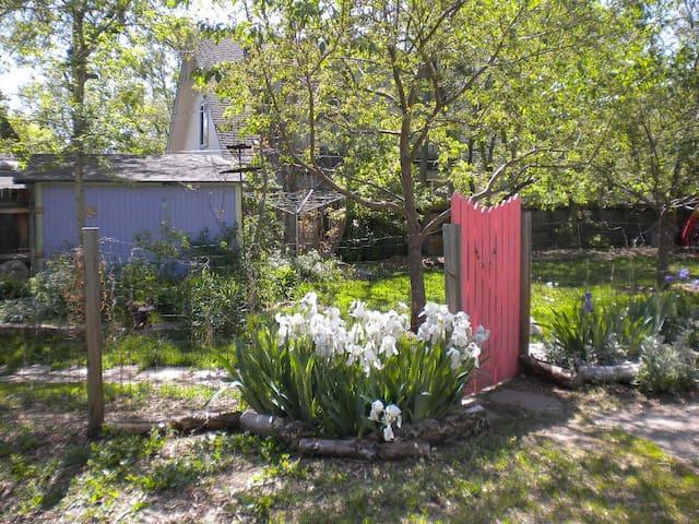 West  Boulder Victorian - room w/ Faerie garden