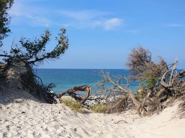 casa vacanze la pineta sul mare