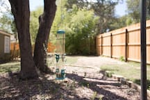 More of the fenced backyard.