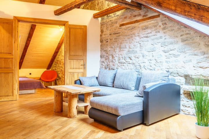 Beautiful medieval 2-room apartment in Old Town. - Tallinn