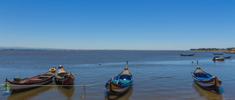 Paraíso entre o Mar e a Ria! - Torreira - Bed & Breakfast