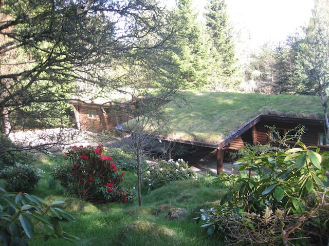 Our Log House in the woods - Kirkmichael - Chalet