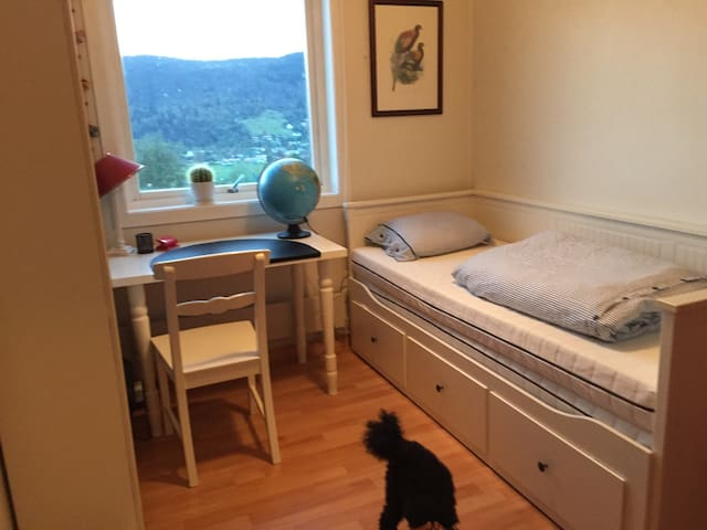 Room in cosy flat close to Bergen city
