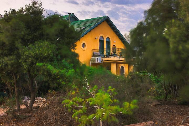 הבית על ההר