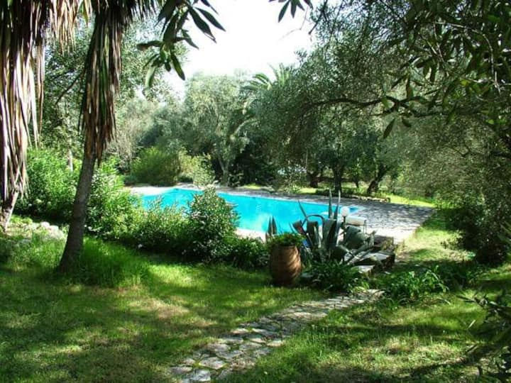 Olive House with shared pool - Dimoulitsa Villas