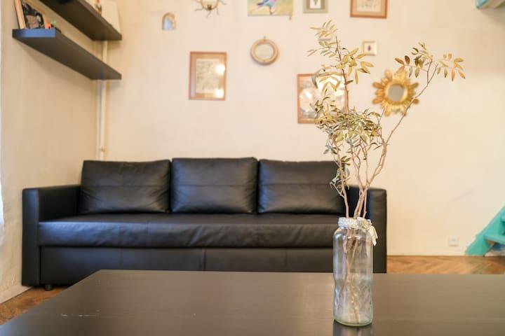 Distinctive apartment(58sq.m) in historical center