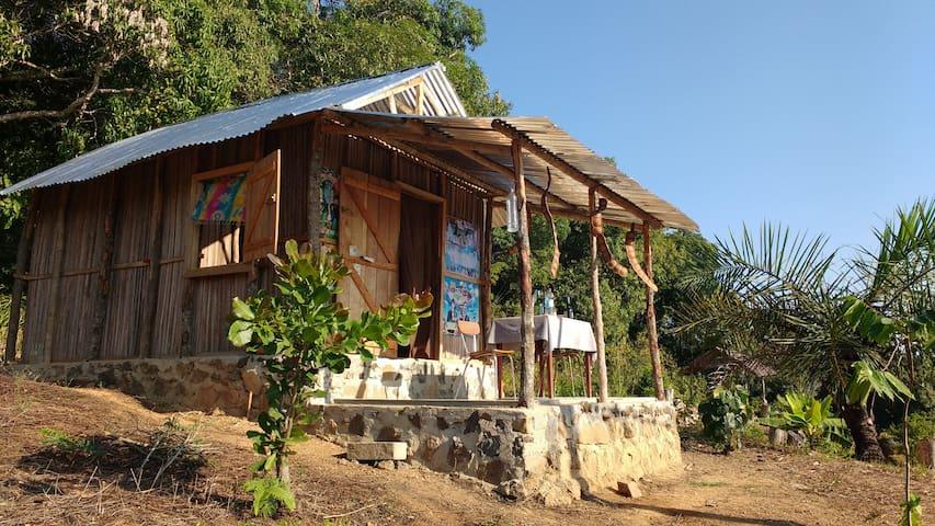 Cabane à Ambatozavavy 2