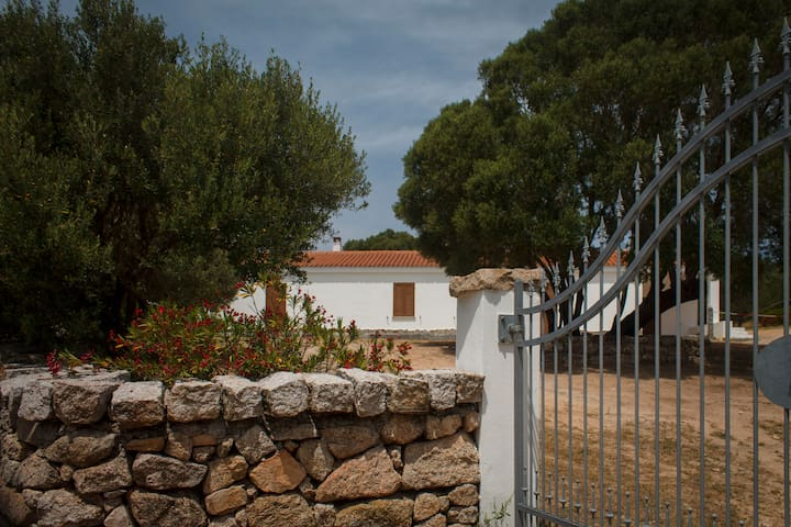 Countryside house near the sea - Arzachena - Talo