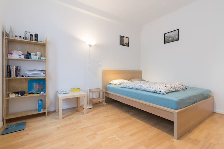Large apartment in the shadows of the Basilica - Koekelberg - Appartement