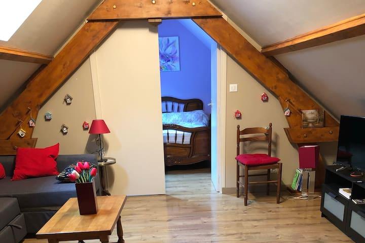 L'alliotine, aux portes des châteaux de la Loire
