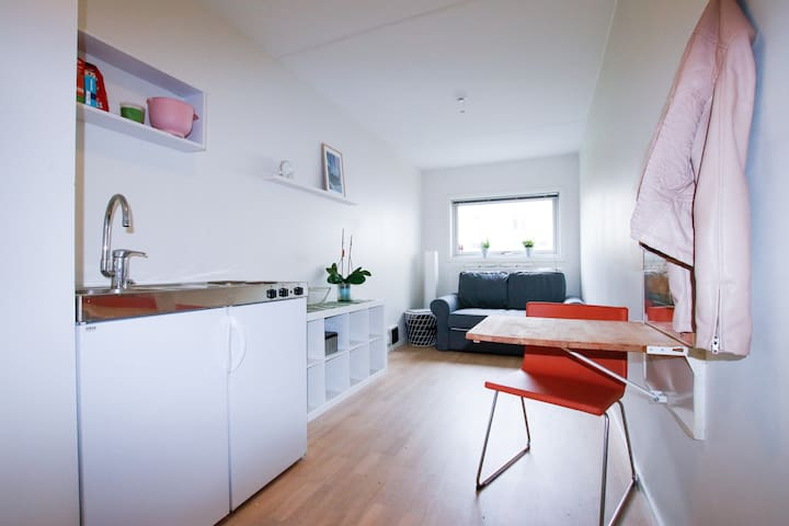 Private studio apartment in Drammen city centre