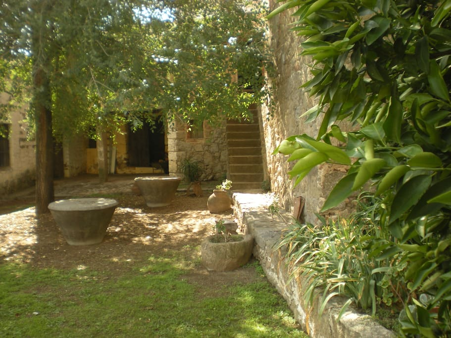 Patio jardín