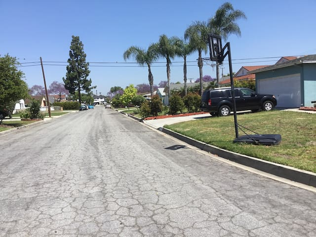 COOLGROVE DR.