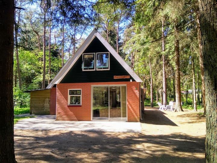 Mooie woning in de bossen van Norg (met sauna)