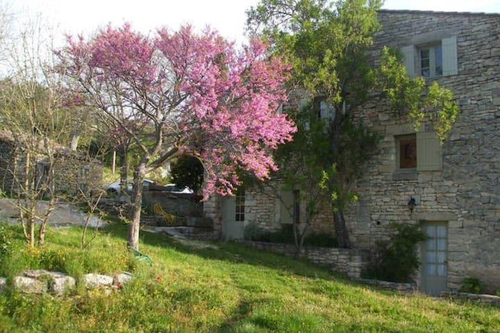 Chambre d'hôte provençale - Luberon