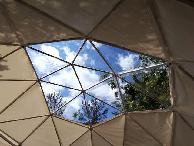 Dome géodésique ecolo / tente bulle ds la nature