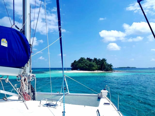 Sailing & whale watching on a 45 ft. Catamaran