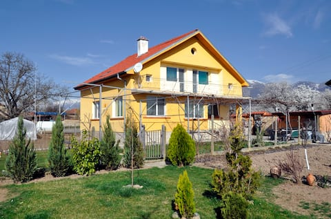 The Yellow House in the Valley of Roses