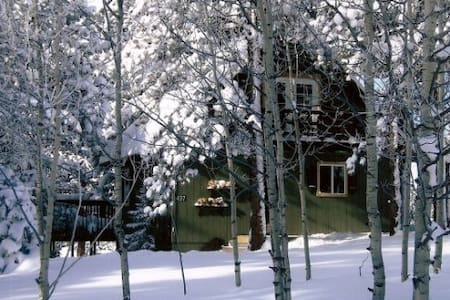 Cozy Chalet in Divide, Colorado - 迪韦德(Divide) - 小木屋