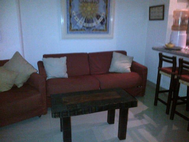 Sala principal. ( los sillones se convierten en sofá camas).