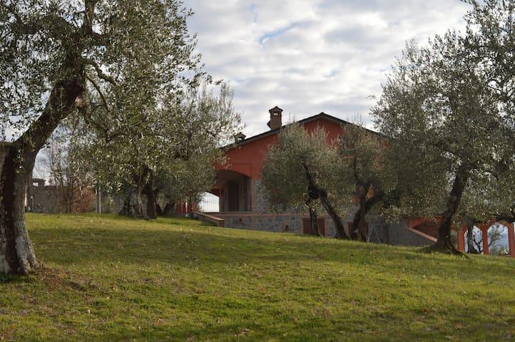 VILLA GLI OLIVI - Country Villa Sleeps 6-9 - Panicale - Villa