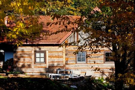 Renovated mountain hut - slow holidays, slow food - nowosądecki - 小屋