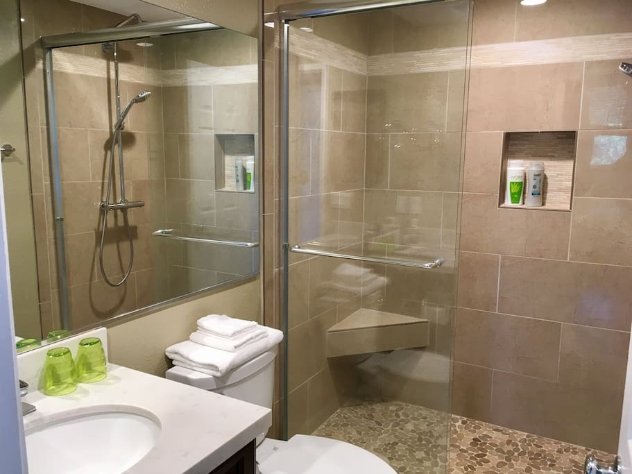 Second bathroom with walk-in shower and all new Hansgrohe shower fixture