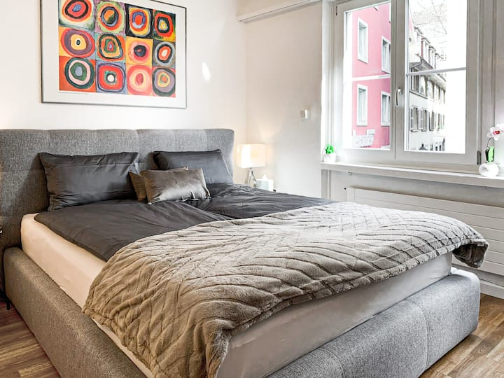 Newly refurbished studio. Old town Zürich
