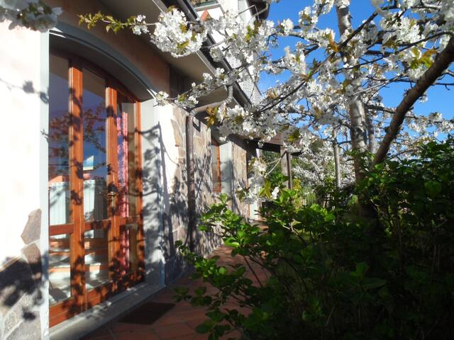 accogliente e luminosa - Lanusei - 家庭式旅館