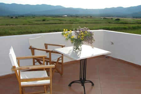 family apartment300m from the beach - Pythagoreio