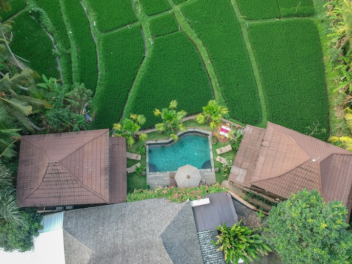 Amazing Suite Wooden with Stuning Views in Ubud
