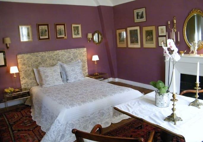 Grande chambre cosy, cadre verdure et châteaux. - Dhuizon - Huis
