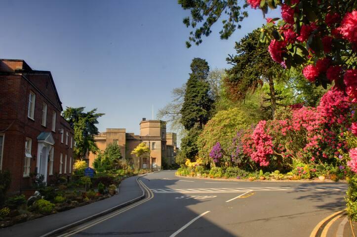 Tettenhall College Boarding House - Wolverhampton - Dormitorio compartido