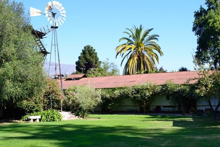 Casa colonial en medio de Viña tradicional.
