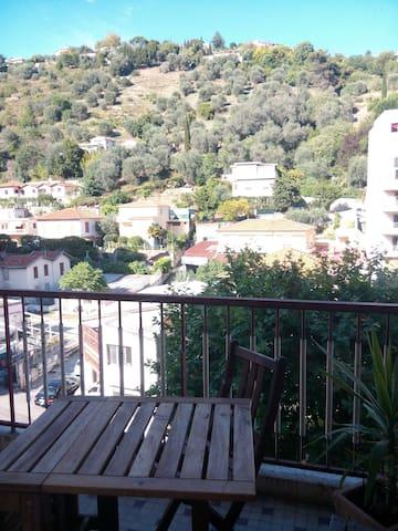 Vue magnifique sur la colline et les oliviers.