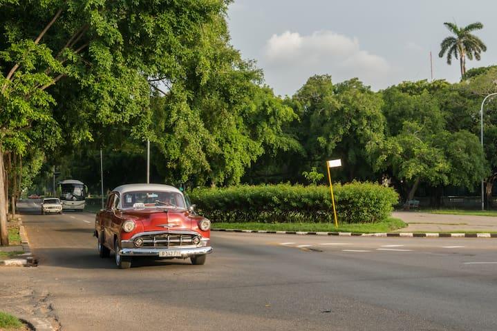 Havana Chuchi's Ave Paseo  + WIFI