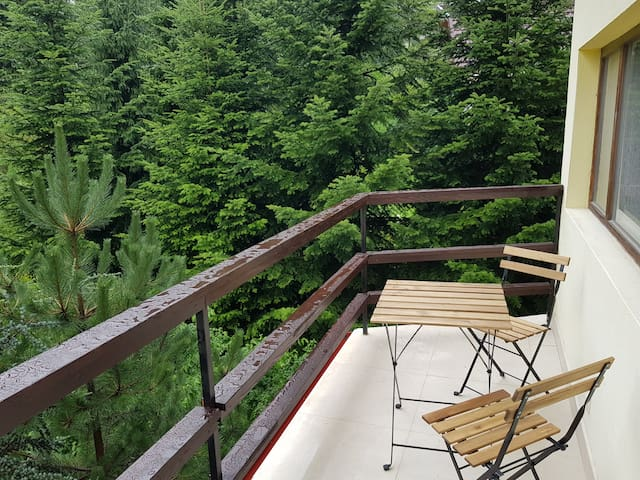 Olala Forest Apartment 1.1 | Balcony