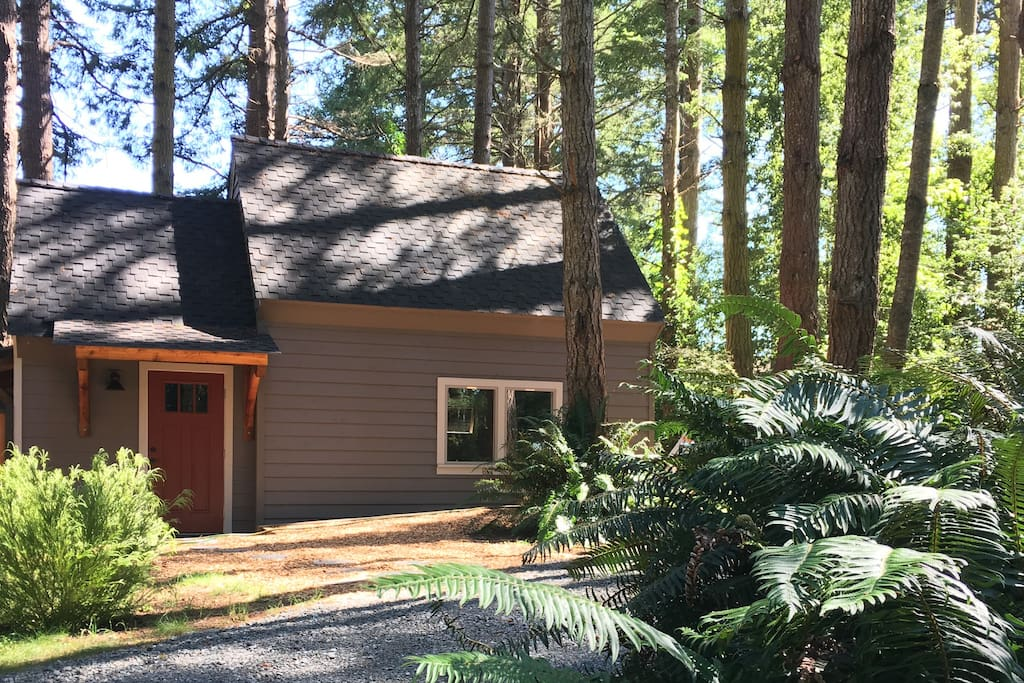 Beautiful cottage in wooded setting.