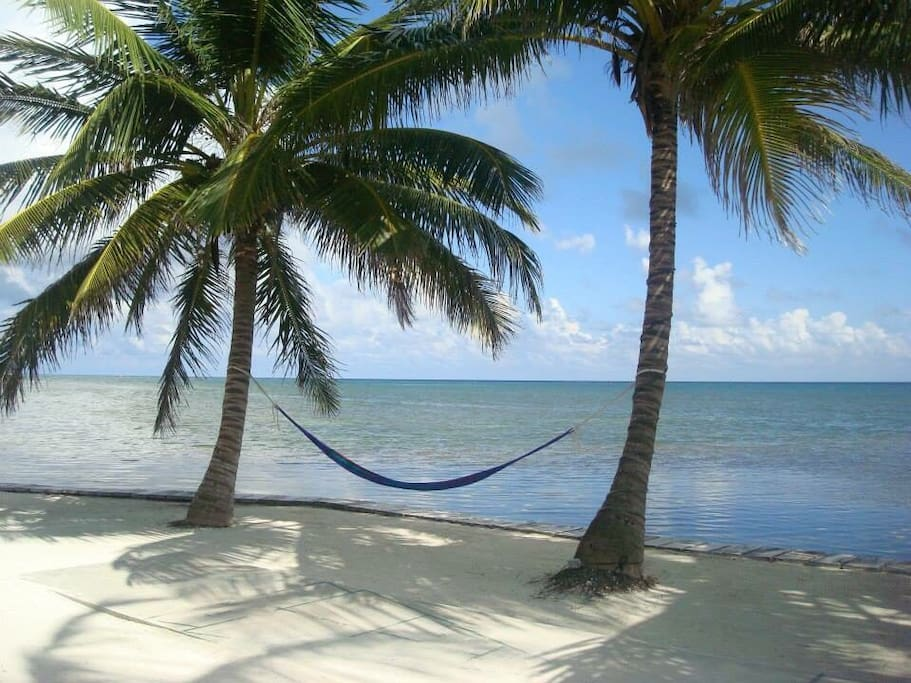 Plenty of hammocks and chairs for relaxing.