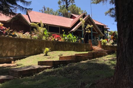 Casa, Parques Temáticos, Sajoma, Los montones.