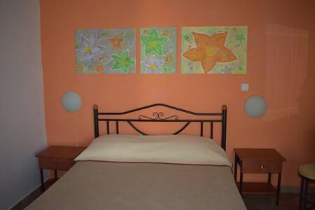 Studio garden view & bb (Room 4. Coral) - Πόρτο Χέλι
