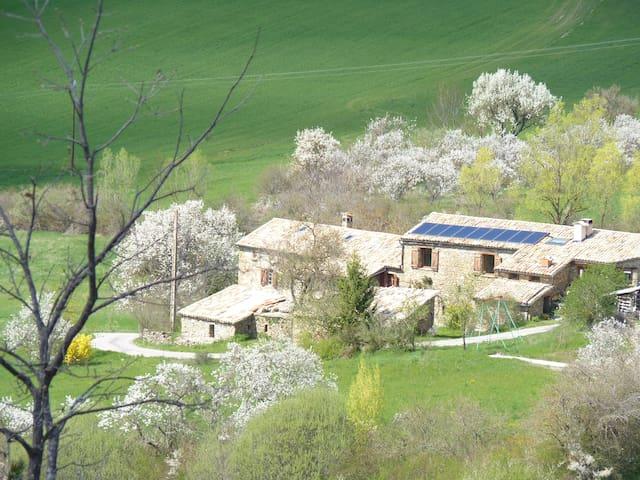 La ferme campanele - Saint-André-de-Rosans - Huis