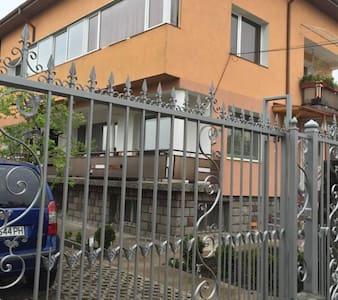 Guest House Aleksandra - House