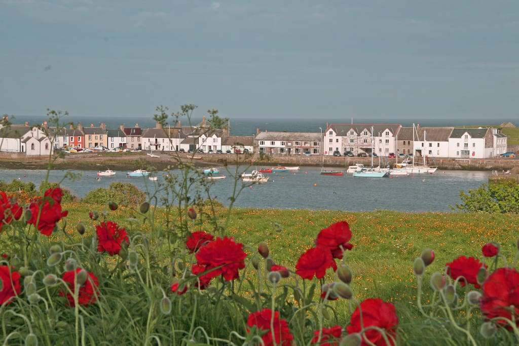Isle of Whithorn      SW Scotland