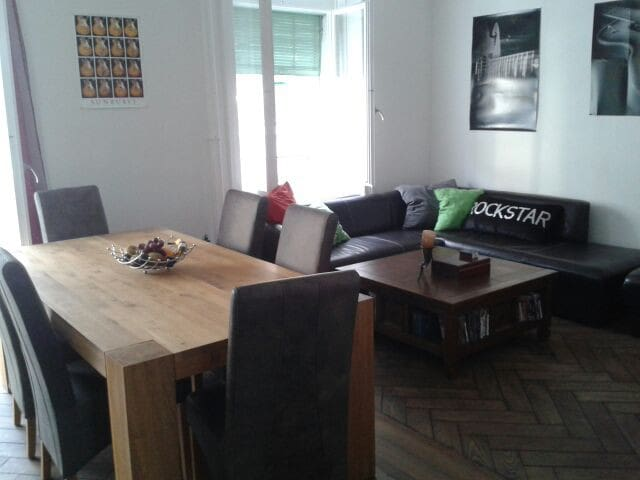 Awesome Apartment in the Heart of Zurich