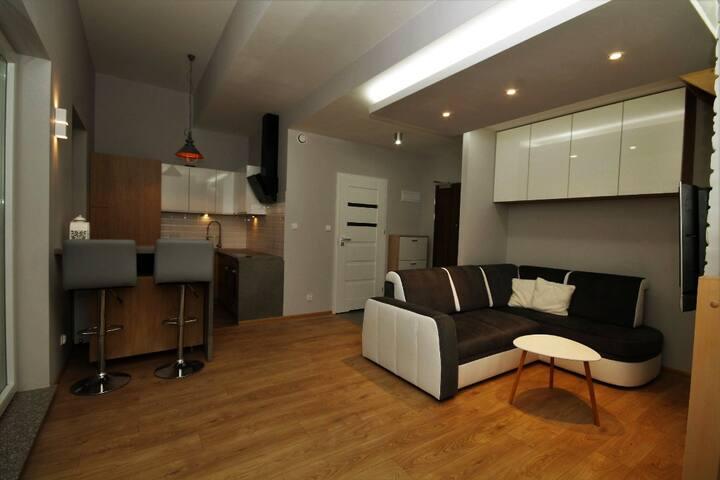 VIP Loft Style Apartment Katowice close to COP24